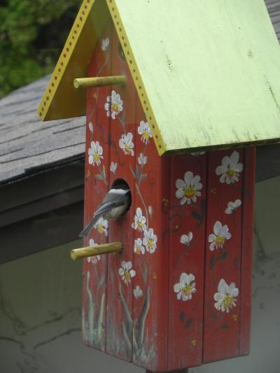 Chickadee at Bird House